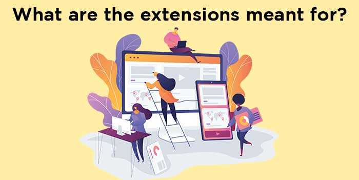 What are the extensions meant for?